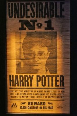Harry Potter Expo