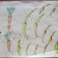 La fin des haricots