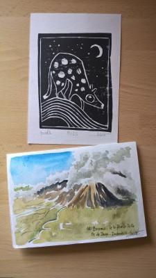 Volcan Bromo et Dasyurus / Elice